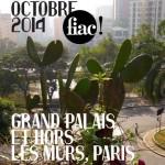 La FIAC 2014 arrive à grands pas !